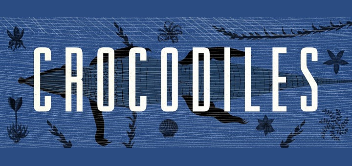 Koncert Crocodiles + After: Maciek Sienkiewicz -Kulturalna i OFF Festival na Placu Defilad