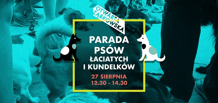 Parada Psów Łaciatych i Kundelków 2017