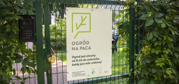 Ogródki społecznościowe pomysłem na zieloną i przyjazną Warszawę